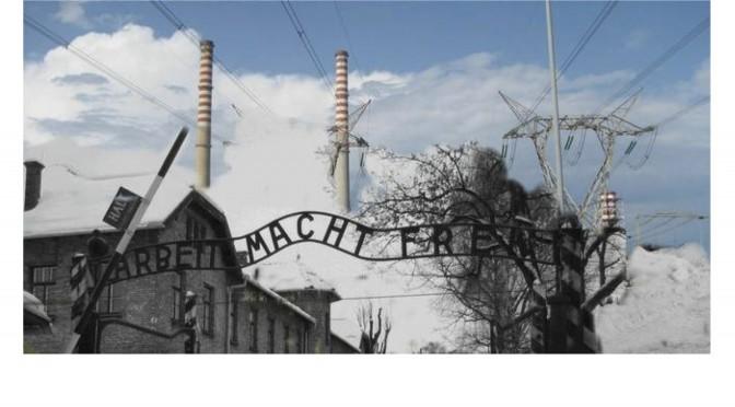 Repower-Kohlekraftwerk: Die umstrittenen Vergleiche der Millionenklage